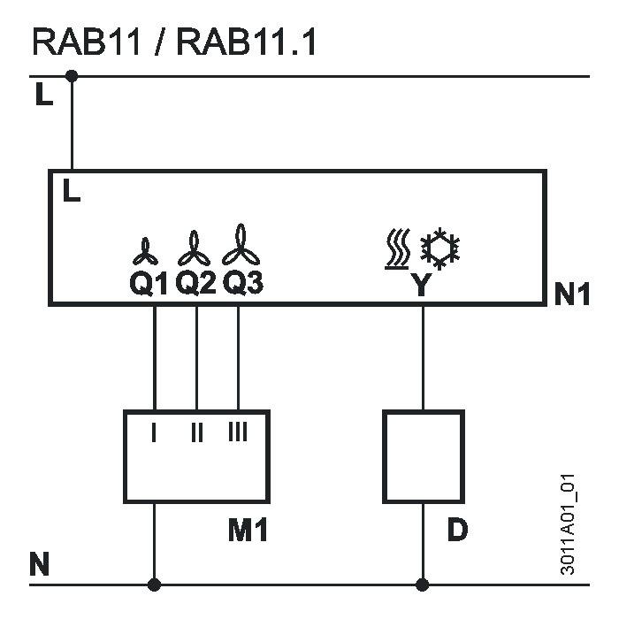 rab11-2.JPG